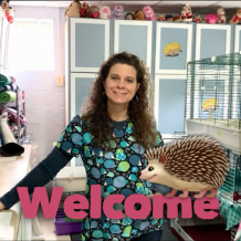 Protected: New Hedgehog Owners: Information and Videos to Watch Before Your Appointment at Our Shop.